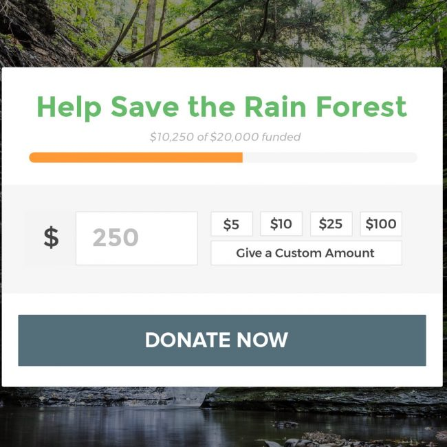 Accept Donations On your WordPress Website with GiveWP